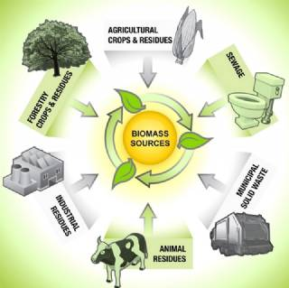 How it's Used Biomass Energy System